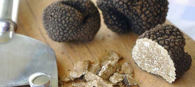 italian truffle